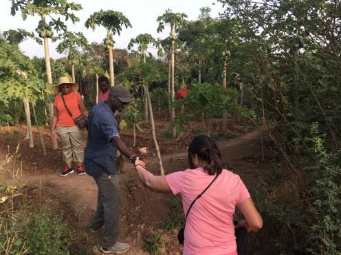 Sebikhotane Community Tour - Visiting the Community Farm with Cousin Alou