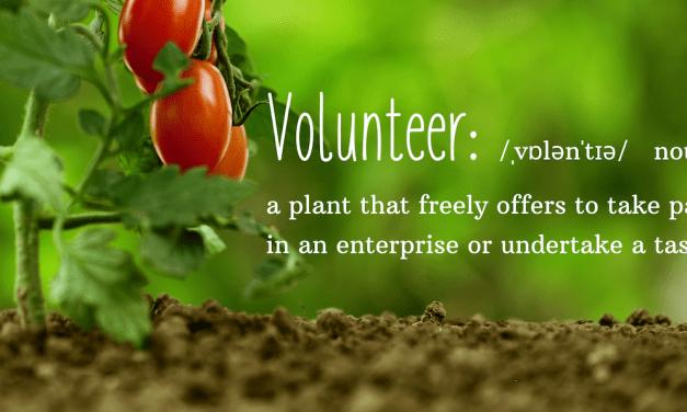 Volunteers welcome