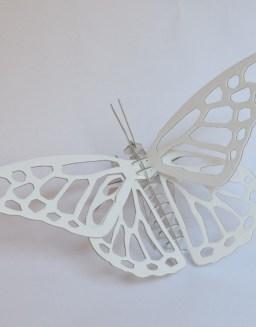 mariposa-3-900-x900-510x652