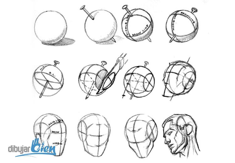 Libros para dibujar: Andrew Loomis el Gran Maestro - DibujarBien.com