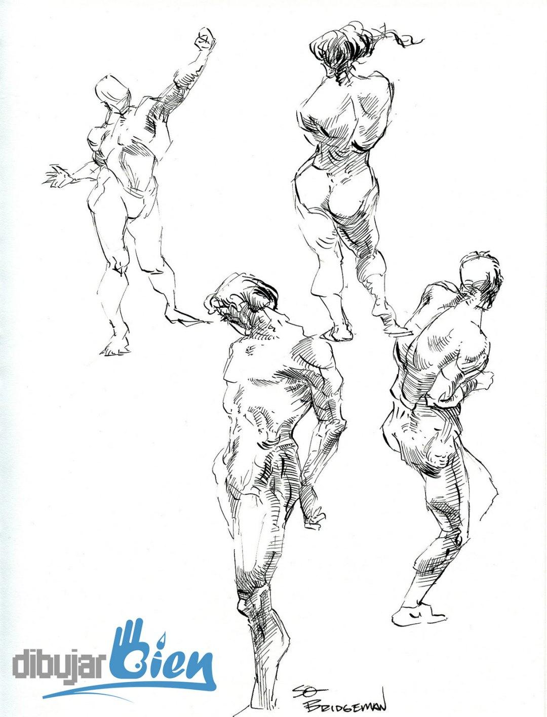 Libros para dibujar anatomía: George Bridgman