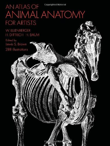 portada-libro-anatomia-animal