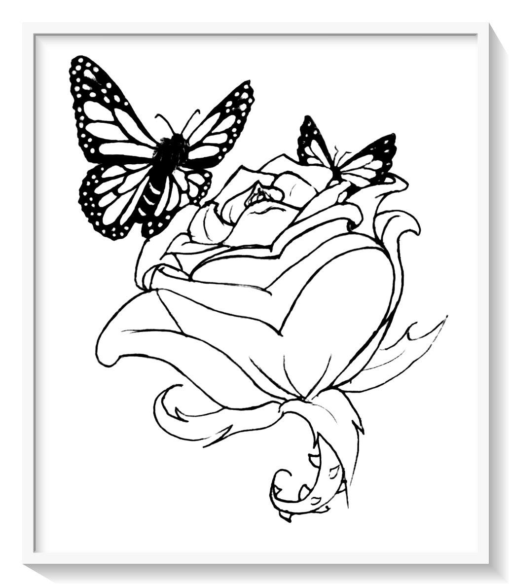 Mariposas Para Pintar Wiring Diagram Database
