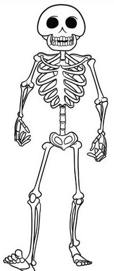 el esqueleto colouring pages