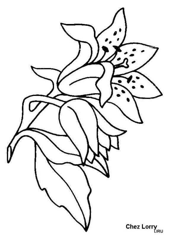 Dibujos De Flores Para Colorear para Niños