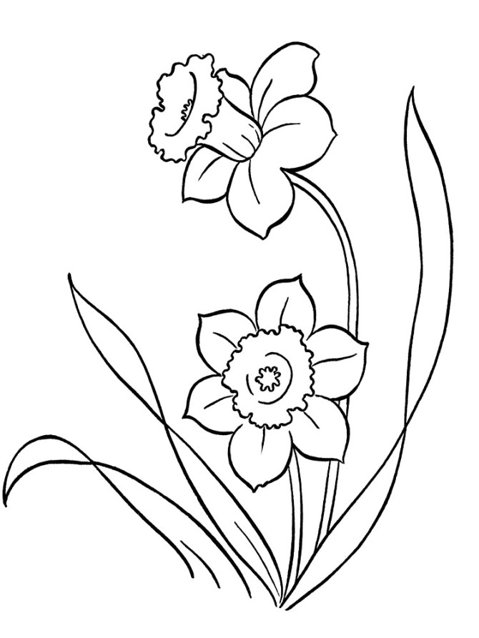 Dibujos faciles para niños de flores