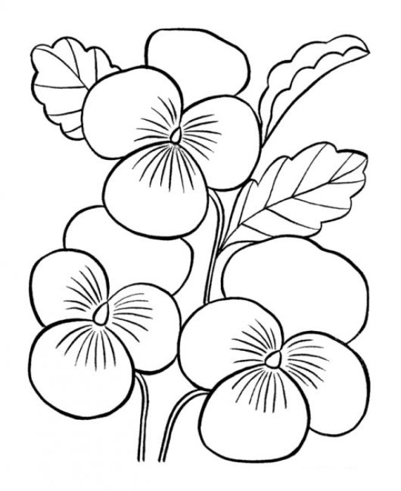 Dibujos De Ramos Flores Para Colorear E Imprimir
