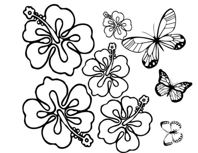 Imprimir dibujos faciles de flores para colorear