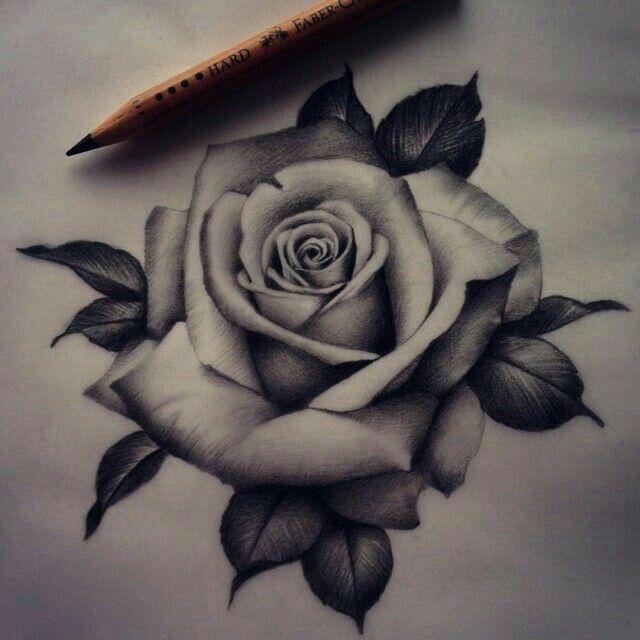 309 Best Images About Crossover Stuff On Pinterest: Como Dibujar Una Rosa Fácil Y Bonita
