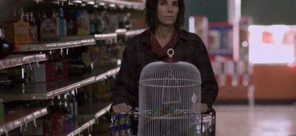 Personagem de Sandra Buulok e os pássaros no mercado