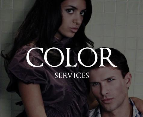 DiCarlo_ColorServicesA
