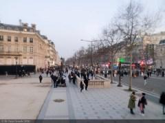 PARIS-ANIMAL-SHOW-TICA-2020 (3 sur 27)