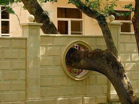 construir entre árvores pikdit good guy home owner