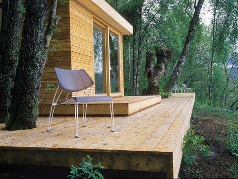 construir entre árvores saunders architecture