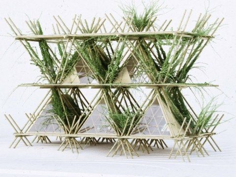 hotel de bambu 1