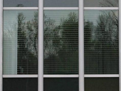 vidro serigrafado evita colisão pássaros - allaboutthatglass