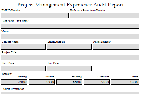 PM Experience Audit Report