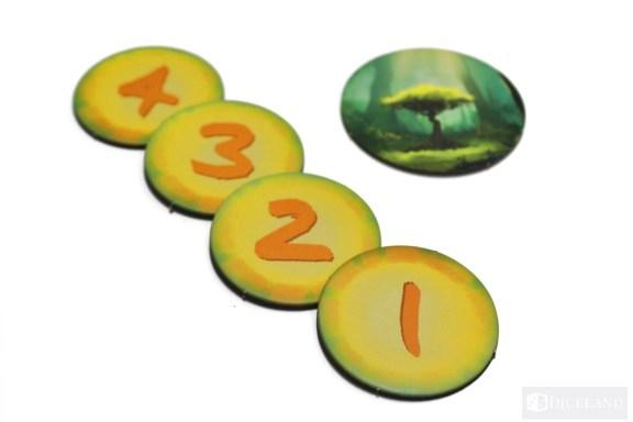 IS Fotosynteza (10)