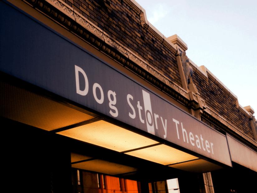 dog-story-awning