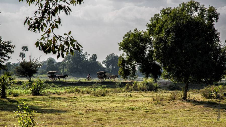 2015 Birmanie Mandalay-11