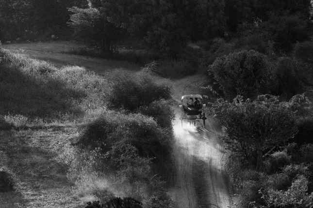 Carriole à cheval - Bagan