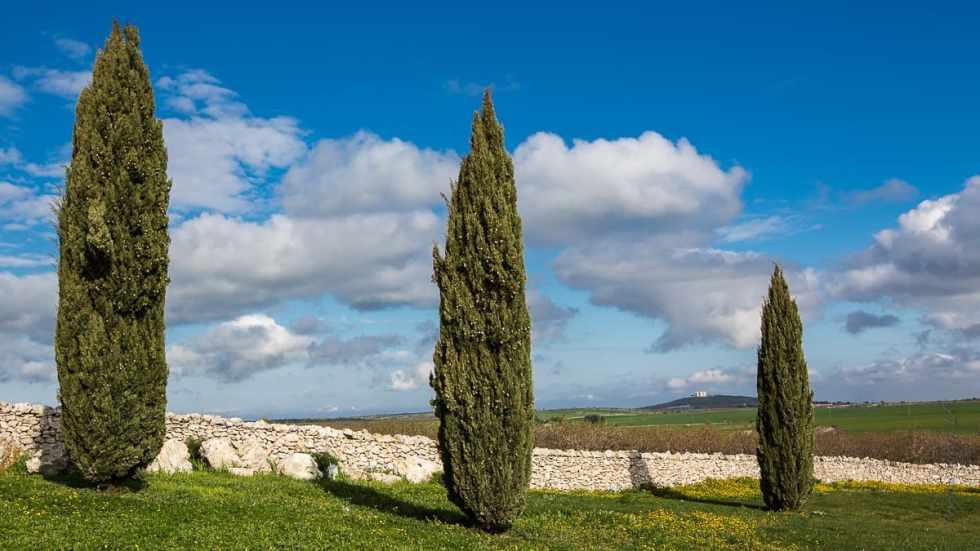 vue des Murge avec au loin le Castel del Monte