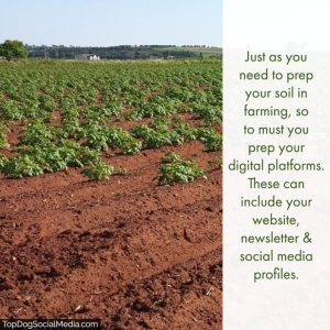 Marketing Your Business — Digital Marketing Is Like Farming