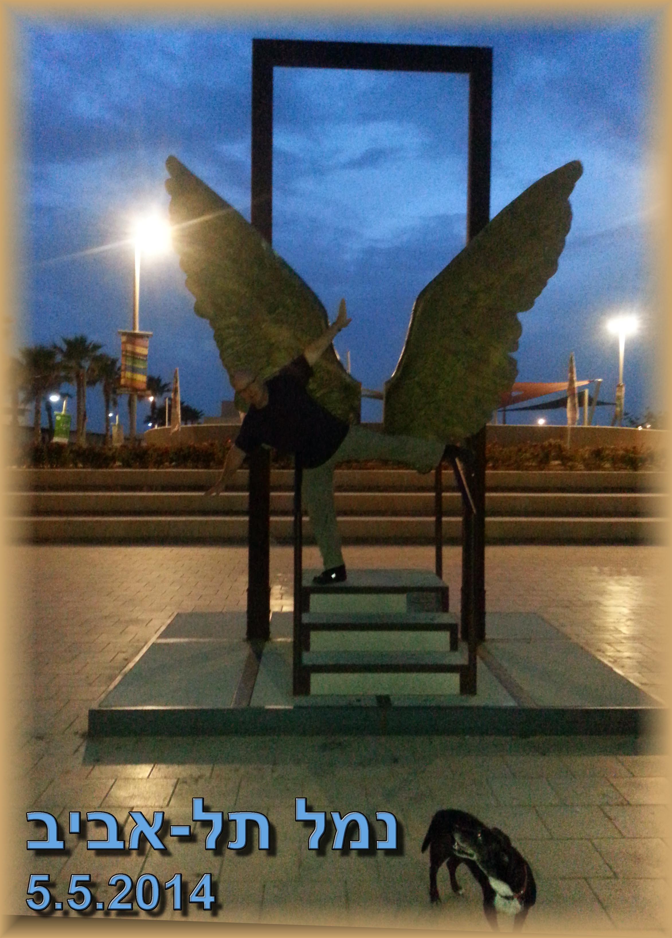 דיקמן אוירון נמל תל אביב