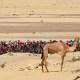 UAE Tour 2021 - Le parcours dans le détail