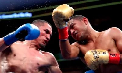 Boxe Super-Mouches : Juan Francisco Estrada tient sa revanche face à Roman Gonzalez