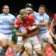 Test match : l'Argentine et le Pays de Galles dos à dos