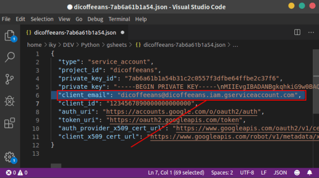 Google API Key: JSON