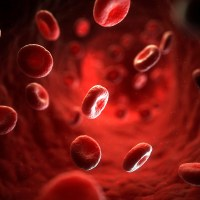 Blood, sweat and tears: phrases with 'blood'