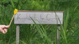 a smiling spatula points to a wooden sign that reads Krolak Lily Garden
