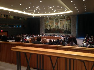 Security Council meeting on the Israel-Palestine conflict in 2015.