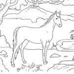 horse-min.jpg