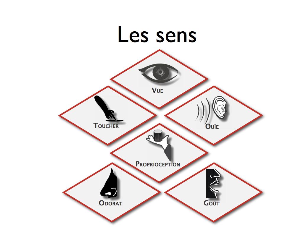 sens047