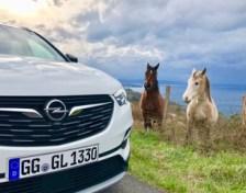 Viel Power unter der Haube des Opel Gandland X Ultimate mit 177 munteren Pferdchen - und zwei schauen am Straßenrand interessiert zu. Foto. Klaus H. Frank