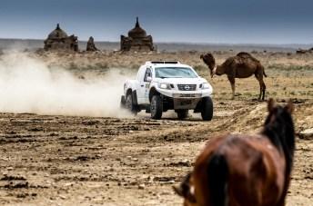 Der FIA Cross Country Rally World Cup 2018 erreicht in Kasachstan mit dem fünften von insgesamt elf Läufen die Saisonhalbzeit. Da staunen die Kamele. © PS Laser