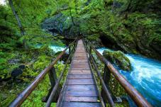 Hölzerne Brücke über die Vintgar-Klamm bei Bled. © www.slovenia.info/ Jacob Riglin, Beautiful Destinations