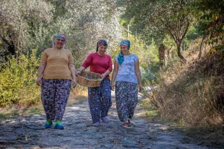 """Obwohl die Tourismusindustrie in Muğla entlang der """"Türkisküste"""" boomt, profitieren die meisten Landwirte vom wachsenden Tourismusmarkt nur geringfügig. © TUI"""