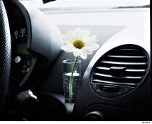 Wie beim Käfer: Die Vase am Armaturenbrett. Volkswagen