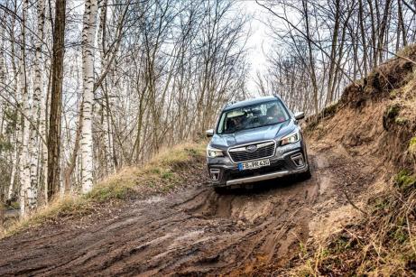 Der Subaru Forester e-Boxer im Gelände. © Subaru