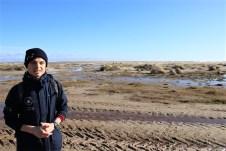 Freiwillige Helfer der Schutzstation Wattenmeer erklären den Gästen der Insel Amrum auf Wunsch die Zusammenhänge von Kniepsand, der einzigartigen Natur und den Mythen, die um das Inselleben ranken. © Kurt Sohnemann