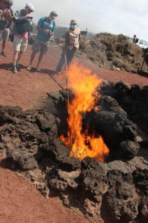 Die Hitze der Erde im Timanfaya-Nationalpark sorgt ohne fremde Hilfe dafür, dass sich das trockene Gestrüpp entzündet. © Kurt Sohnemann