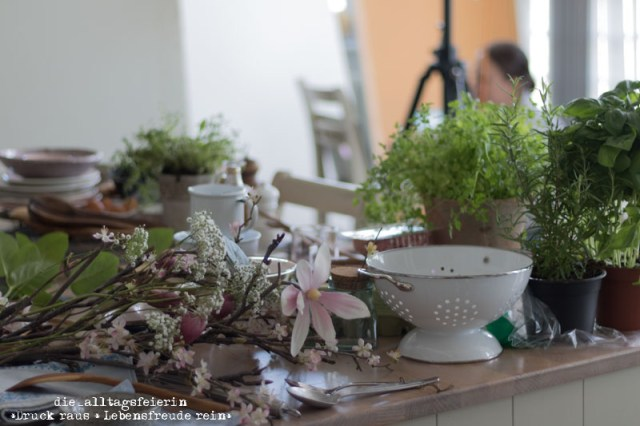 Foodprops, Deko, Geschirr, Showkueche kochen & genießen, diealltagsfeierin.de, House of Food