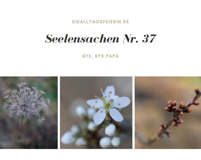 Bye, bye, Papa, Seelensachen 37, diealltagsfeierin.de