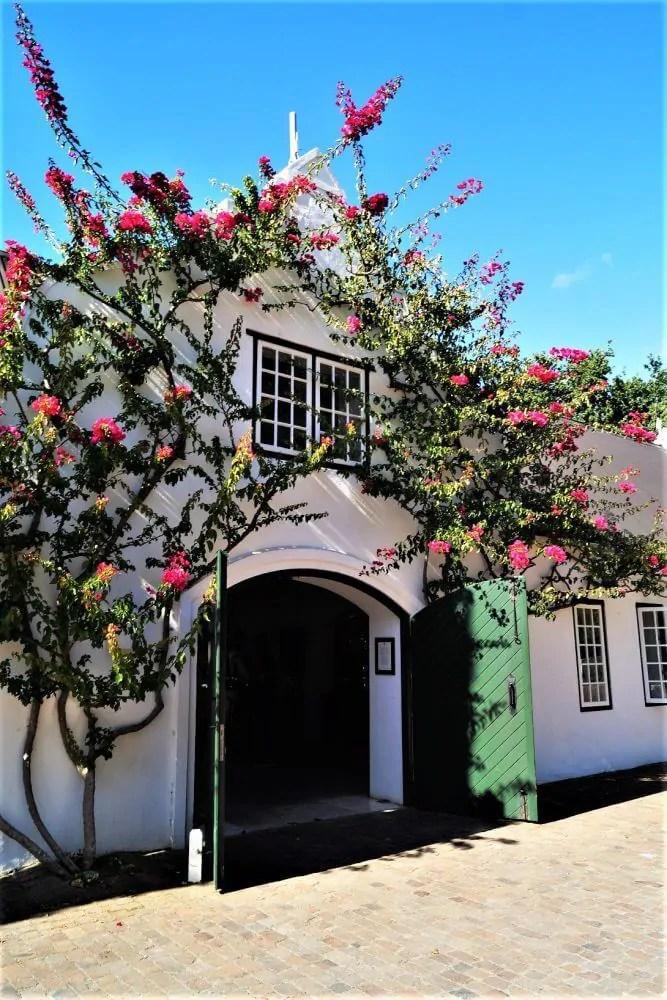 Peter Falke Wines von Kapstadt aus zur Weinprobe