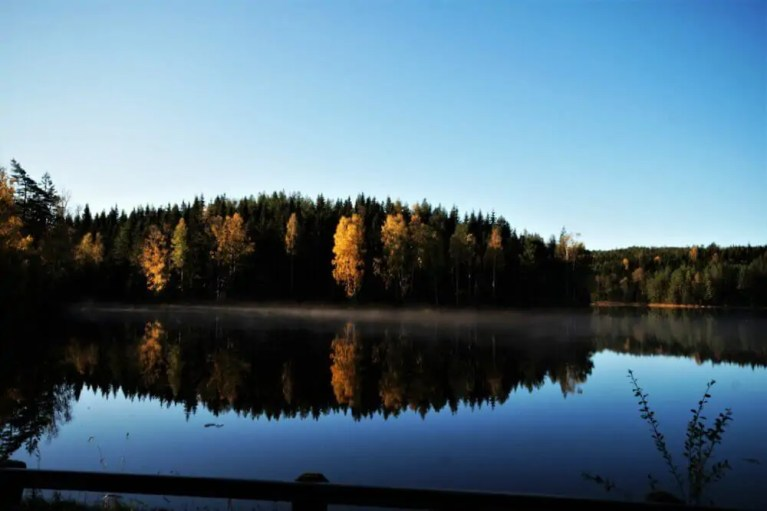 Schweden - Das Land der Wälder und Seen