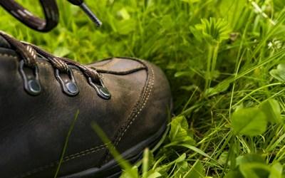 Training: ökologisch Sport treiben – was bedeutet das?